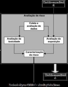 Estudo Avaliação de Risco Ambiental