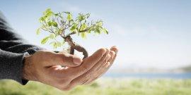 Os cuidados com o meio ambiente e a sustentabilidade estão cada vez mais em pauta nos noticiários e também entre a população. No caso das empresas, é muito importante contar com a consultoria ambiental de uma empresa especializada.